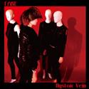 125_hystoic-vein_fake-1
